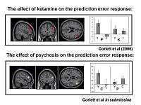The effects of ketamine and endogenous psychosis on the brain response to prediction error