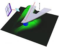 AFM cantilever with a spherical tip indenting a cell